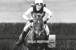 Noble Rider Willa Newton