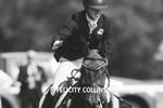 Noble Rider Felicity Collins