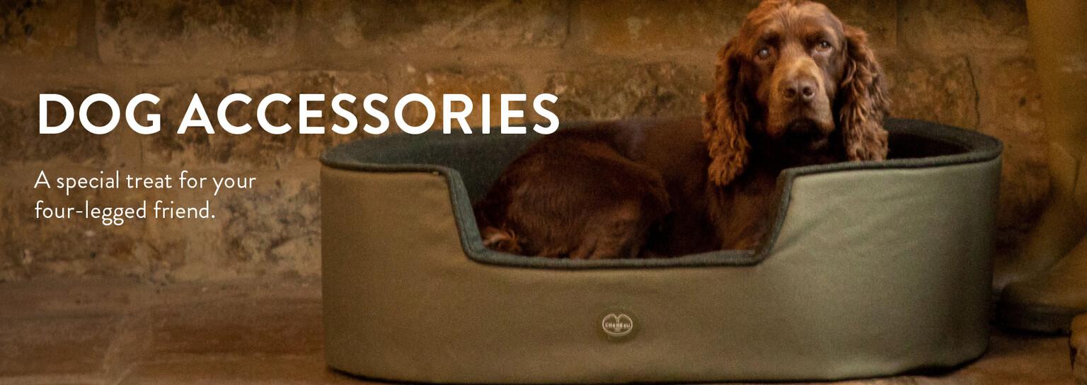 Shop Dog accessories