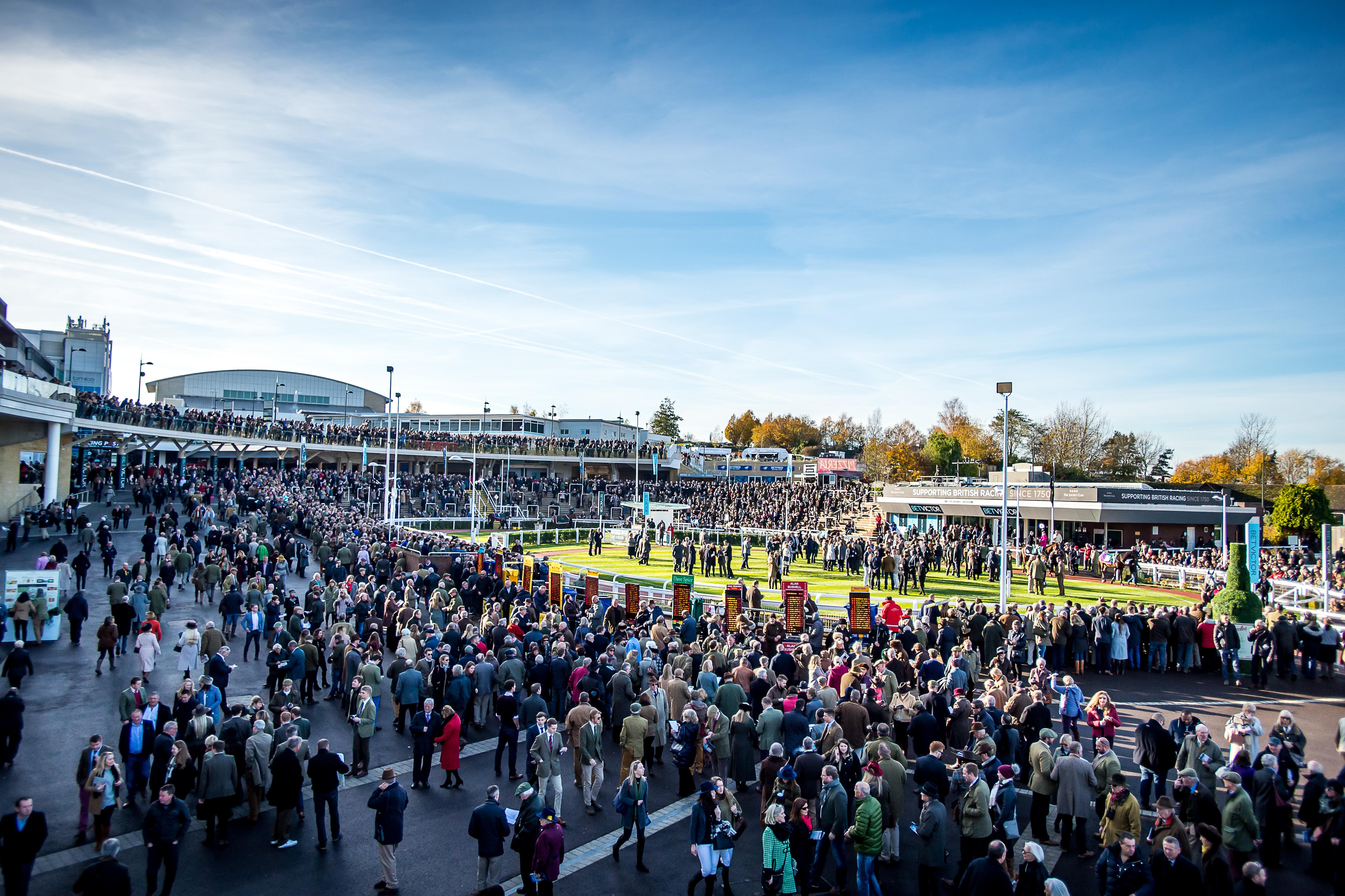 Cheltenham Raceday
