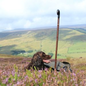 What to Wear - Grouse Shooting