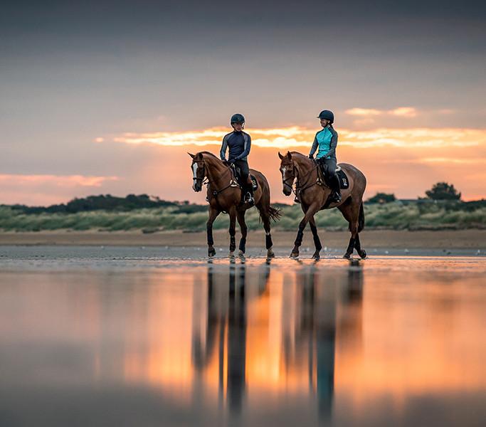 Noble Equestrian