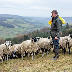 An den Füßen von Landwirten: Luke Doughty