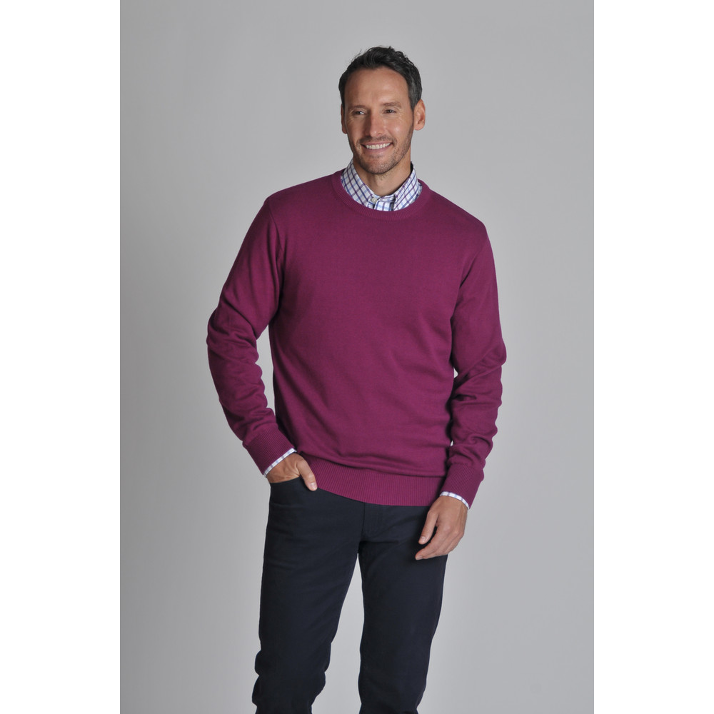 Cotton Cashmere Crew Jumper Plum