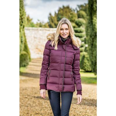 Kensington Down Jacket Fig