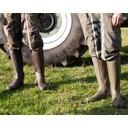 Men's Cérès Neoprene Lined Boot