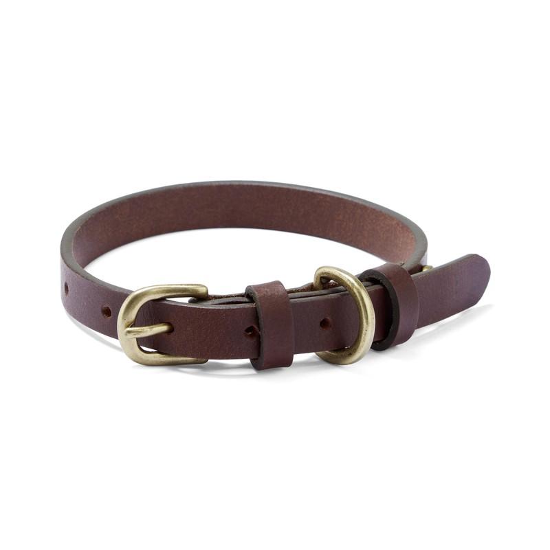 Dog Collar -