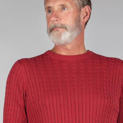 Pima Cotton Cable Crew Jumper Cherry