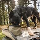 Gamelle portable pour chien