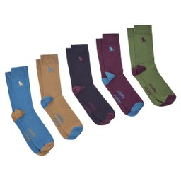 Schoffel Country Combed Cotton Sock (Box of 5) in Ptarmigan Dark Teal Mix
