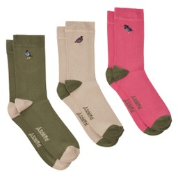 Schoffel Country Ladies Bamboo Sock (Box of 3) in French Partridge Artichoke Mix